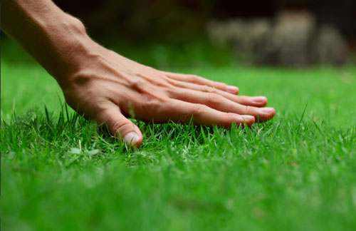 Enhance LLC Lawn Mowing Service