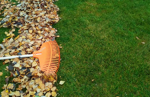 Enhance LLC Fall Lawn Cleanup